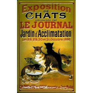 Exposition De Chats