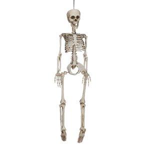 Skelett 60 cm