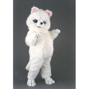 Mizi Die Katze