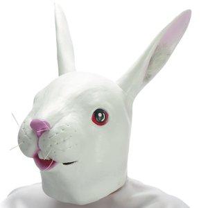 Kaninchen - Hase