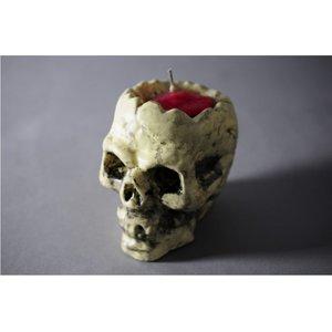 Totenkopf mit Blutigem Gehirn