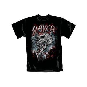 Slayer: Demon Storm