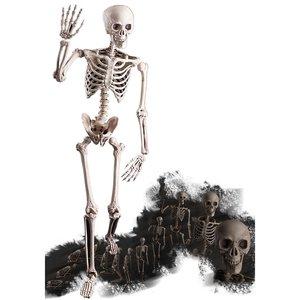 Halloween - Lebensgrosses Skelett