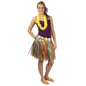 Hawaï hula - l'arcobaleno