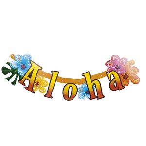 Hawaii Aloha Banner