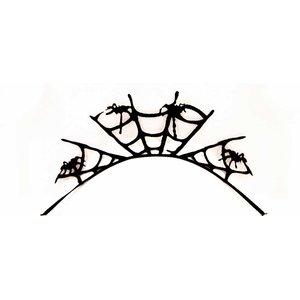 Black Spider - Spinne