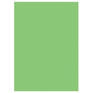 Geburtstagsparty / Gartenparty (hellgrün)