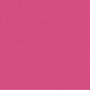 Fête d'anniversaire / Gardenparty (rose fuchsia)