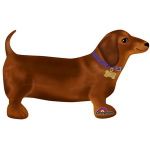 Amies du chien: Teckel marchant