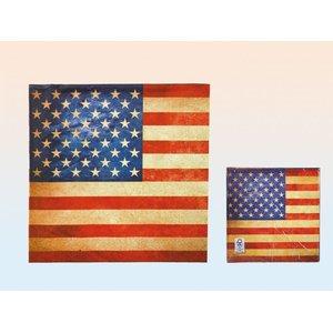 Vintage USA 20er Set (33 x 33 cm)