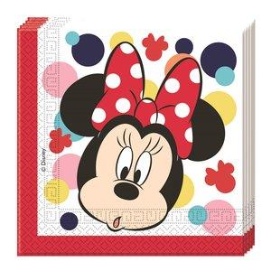 Minnie Teens (20 pièces)