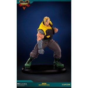 Street Fighter V: 1/4 Nash
