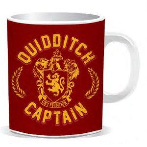 Harry Potter: Quidditch Captain
