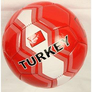 Fussball - Türkei