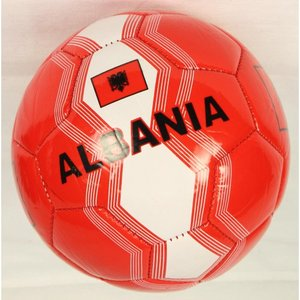 Fussball - Albanien
