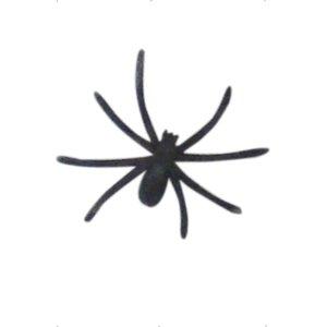 Faserstoff Spinnennetz