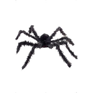Grosse Haarige Spinne mit leuchtenden Augen