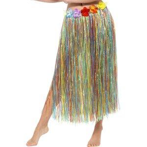 Hawaï hula - l'arc-en-ciel