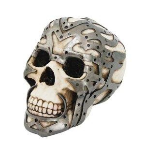 Schädel mit Eisenbeschlägen