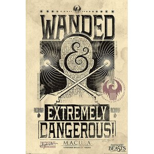 Fantastic Beasts: Wanded & Extremely Dangerous