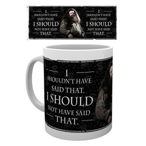 Harry Potter: Hagrid Quote