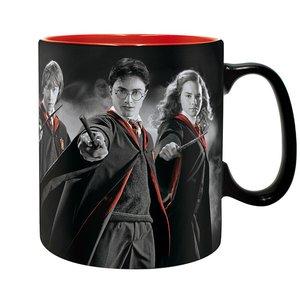 Harry Potter: Harry, Ron & Hermine