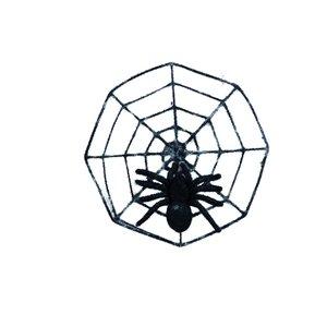 Araignée & Toile d'araignée