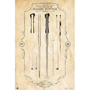 Harry Potter: The Wand