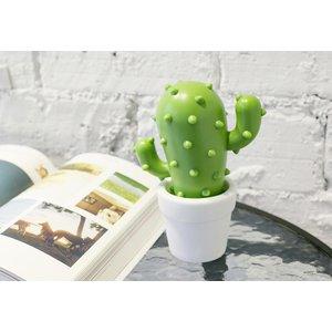 Kaktus - Nightlight