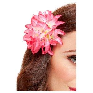 Hawaï - Fleur