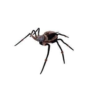 Gigantische Spinne mit leuchtenden Augen