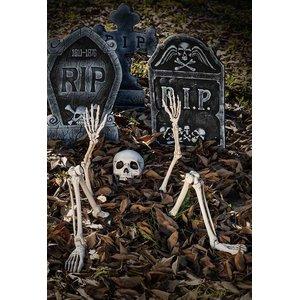Skelett aus der Erde (5er Set)