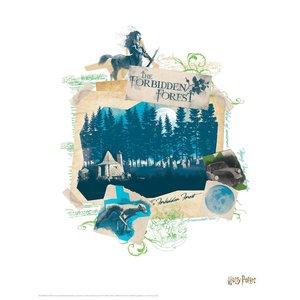 Harry Potter: Bilder-Set (10-teilig)