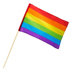 Handfahne gross Regenbogen - Peace