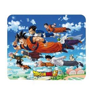 Dragon Ball: Groupe